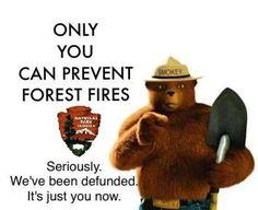 Smokey's Last PSA