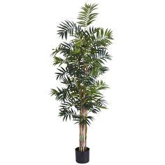 6' Bamboo Palm Silk Tree