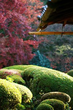 rain off of traditional roof eaves, Japan Japan Garden, Famous Castles, Modern Garden Design, Japanese Beauty, Japanese Style, Japanese Culture, Dream Garden, Beautiful Gardens, Beautiful Places