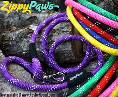 Just got these awesome #zippypaws #leashes in and I'm obsessed. Had to grab a purple for Harbor :) @zippypaws