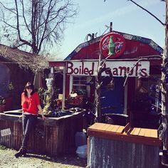 rem830's photo Ne aps manquer pas lojn de Vicksburg le pittoresque Tomato Place où l'on déguste les meilleures sandwiches aux tomates frites de tout le Sud. Des arachides bouilles accompagnées de froides bieres locales vous ararcheront des oh,  des ah et des encores! Tout cela près de Vicksburg.