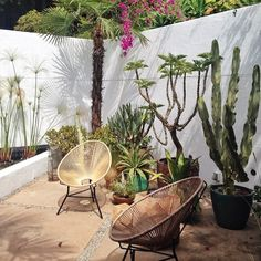 If your garden is a little sun-trap, then the Acapulco chair is perfect for you Outdoor Rooms, Outdoor Gardens, Outdoor Living, Outdoor Decor, Indoor Outdoor, Exterior Design, Interior And Exterior, Landscape Design, Garden Design