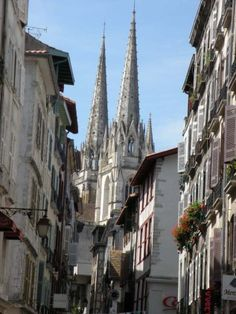 Camino Frances de Santiago Stages Guide French Way Route