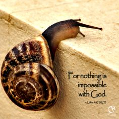 For nothing is impossible with God - Luke 1:37 (NLT) Bible verse |