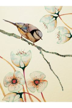 By Colleen Parker. I couldn't find the title for this one, but it appears to be a combination of two separate works by her: 'Imagined Botanicals' and 'Solitary Blue Tit'. I love the delicate color palette.