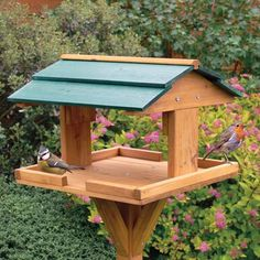Wood Bird Feeder  Please DON'T USE PLASTICS, all those Recycled Feeders Made Out Of Milk Jugs Scrape and Infect Eyes, Scrape Feet and Tear Feathers..Use Good Old Fashion Wood!