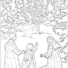 Coloring pages - Narnia magical forest