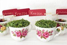 Die schönen Tassen mit Erde füllen, die Kräutersamen (z. B. Kresse und Schnittlauch) darauf verteilen, andrücken, bewässern und schon habt ihr euren Mini-Kräutergarten. :)