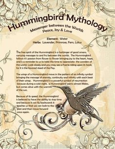 Hummingbird Mythology – Messenger between the Worlds – Witches Of The Craft® Hummingbird Quotes, Hummingbird Symbolism, Hummingbird Meaning, Dragonfly Symbolism, Dragonfly Meaning, Dragonfly Art, Animal Spirit Guides, Spirit Animal, Magick Spells