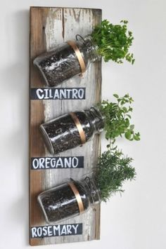 42 DIY garden wood projects for your home on a budget - Diy Garden Projects Mason Jar Herbs, Mason Jar Herb Garden, Pot Mason Diy, Herb Garden Pallet, Diy Herb Garden, Mason Jars, Spice Garden, Garden Web, Herbs Garden