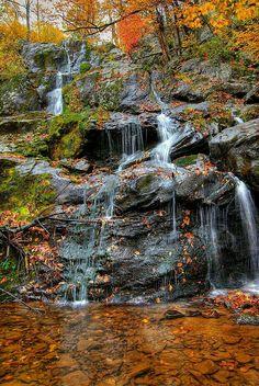 Shenandoah national park USA