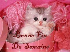 BONJOUR - BONNE JOURNEE - BON VENDREDI - BONNE FIN DE SEMAINE - BISOUS A TOUS
