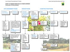 Rain Garden Design Templates - rain garden Process Chart JPEG