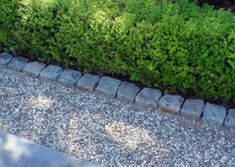 Installing A Pea Stone Patio - This has good step by step directions for pea gravel walkway Informationen zu Installing A Pea Stone - Driveway Edging, Patio Edging, Pea Gravel Patio, Gravel Walkway, Driveway Landscaping, Garden Edging, Garden Borders, Garden Paths, Backyard Pavers