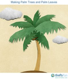 This is a guide about making palm trees and palm leaves. Palm tree decorations are popular for parties, banquets, and other events.