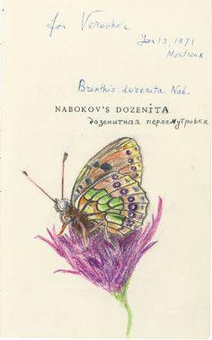 Vladimir Nabokov: Leptiri