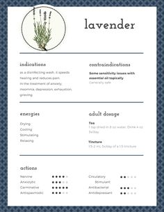 Beautiful monograph on the medicinal properties of lavender - the swiss army knife of the apothecary. Click on it for even more information on how to use lavender to heal. | Hillsborough Homesteading