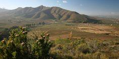 Van Loveren Hiking trail's view. Hiking Trails, Rafting, Vineyard, Environment, Country Roads, Van, Mountains, Friends, Nature
