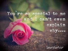 You Are So Special To Me Quotes. QuotesGram by @quotesgram
