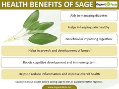 Out of the many health benefits of sage, some of the most important include its ability to improve brain function, lower inflammation throughout the body, prevent chronic diseases, boost the strength of the immune system, regulate proper digestion, alleviate skin conditions, increase the health and strength of bones, slow the onset of cognitive disorders, and prevent the onset of diabetes.
