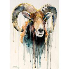 Original Watercolour Painting- Ram, goat, animal, illustration, animal watercolor, ovis aries, capra