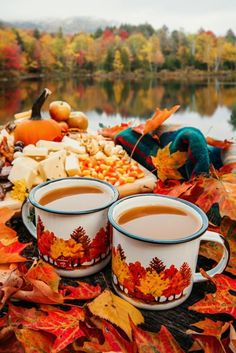 Share Pictures, Fall Pictures, Fall Season Pictures, Fall Pics, Fall Images, Fall Photos, Planting Pumpkins, Grow Pumpkins, Autumn Cozy