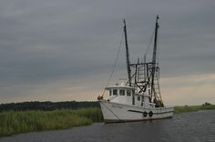 (Shrimp boats remind me of St. Mary's, Georgia-Pamela)  Shrimpboat by Michele photos, via Flickr