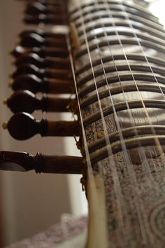 So much vibrato, I love it! #sitar #music #instrument #persian