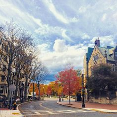 why does it seem so inviting #fall #BU #boston by clairezjc