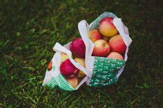 Grown in BaltCo: Weber's PYO Peachberry Farm
