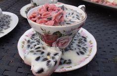 Een high thea voor vogeltjes  Ik heb gesmolten vet met allerlei zaad en zonnepitten in het kopje en op het schoteltje gegoten en een gekleurde toef vet erop en natuurlijk een koekje erbij.