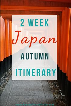 Thinking of going to Japan for the first time? If so, you definitely need this two week Japan itinerary for autumn. It has everything you need to know about where to go, what to do and what to see in Japan in 14 days. Visit Tokyo, Osaka, Kyoto, Nara, Hiroshima and Nikko. Free PDf of the itinerary and a Japan itinerary map included! 2 week Japan itinerary for autumn | 2 weeks Japan itinerary | 14 days Japan itinerary first time #honesttravelstories #japanitinerary #2weeksjapanitinerary
