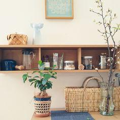 marotsukuneさんの、桜,ダンスク,バーズワーズ,リサラーソン,無印良品 棚,カゴ,観葉植物,棚,のお部屋写真