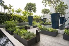 Herb Garden - Marina Bay Sands