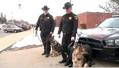Harsher penalty for killing police dogs - News 10 Now