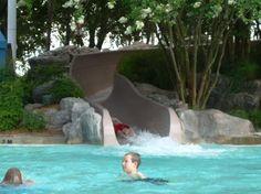 Top 5 Resort Pools at Walt Disney World