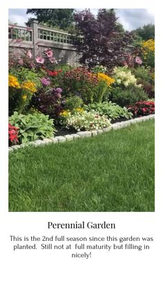This is the second full season since this garden had been installed.  Its filling in nicely! Garden Junk, Wooden Garden, Easy Garden, Garden Art, Garden Design, Backyard Retreat, Backyard Ideas, Garden Ideas, Outdoor Ideas