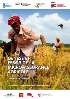 This publication discusses the current state of agricultural insurance markets in the world, highlighting the main lessons that can be drawn from experiences in implementation in view of promoting its expansion.