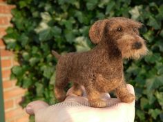 Needle felted wirehaired dachshund Ready to ship by FeltSpecial