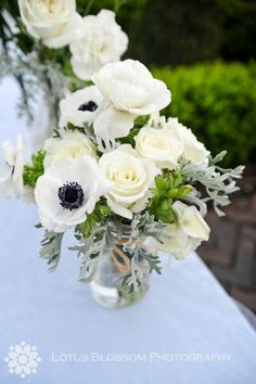 #anemones (photo source: Harvey Designs)