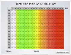 Body mass index with health risk charts and illustrations included