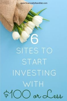 6 Sites to Start Investing with $100 or less | How to Invest | Investing for Beginners | Investing for millennials | Wealth | Personal Finance #site:financeus.site