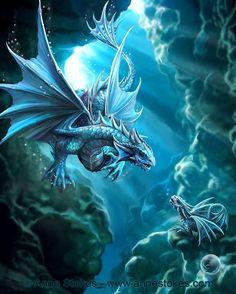 Draco Aqua - Anne Stokes