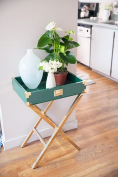 A small tray table with two plants and a vase