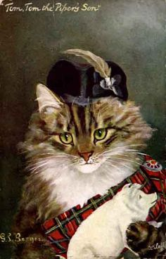 Cat and Tartan Postcard by de G.L. Barnes. 1906.