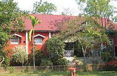 Wild Grass Resort - Kaziranga - Assam