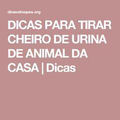DICAS PARA TIRAR CHEIRO DE URINA DE ANIMAL DA CASA | Dicas