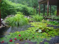 Meditation Sanctuary Pond at Omega Institute, Rhinebeck, New York. Omega offers a variety of opportunities for personal growth in spring, summer, or fall.
