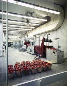 © Ezra Stoller - IlPost Heinz Factory, Skidmore Owings & Merrill, Pittsburgh, PA, 1958