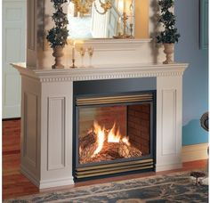 Napoleon 30000 Btu See Thru Direct Vent Zero Clearance Natural Gas Fireplace Bgd40n2